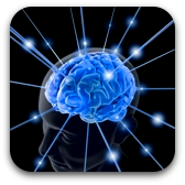 brainwave optimization